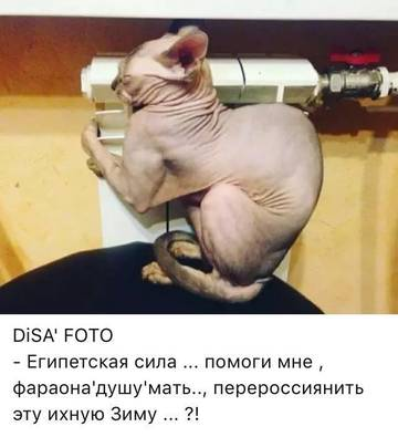 http://s8.uploads.ru/t/eKaSV.jpg