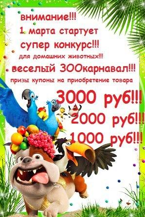 http://s8.uploads.ru/t/eiK6O.jpg