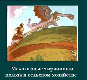 http://s8.uploads.ru/t/erpLt.jpg
