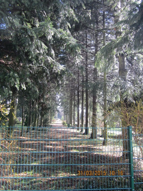 http://s8.uploads.ru/t/fC6SU.jpg