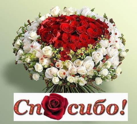 http://s8.uploads.ru/t/gEhtl.jpg