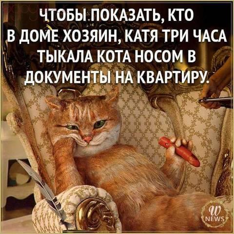 http://s8.uploads.ru/t/gZoHR.jpg
