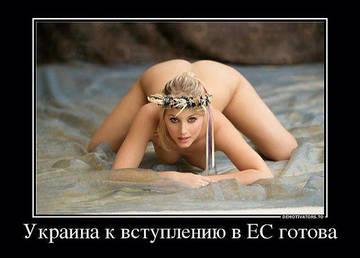 http://s8.uploads.ru/t/glFcY.jpg