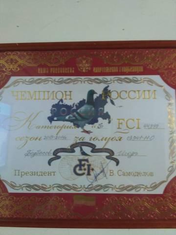 http://s8.uploads.ru/t/gp3hb.jpg