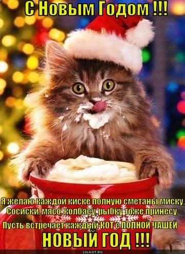 http://s8.uploads.ru/t/grBt8.jpg