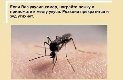 http://s8.uploads.ru/t/guyOK.jpg