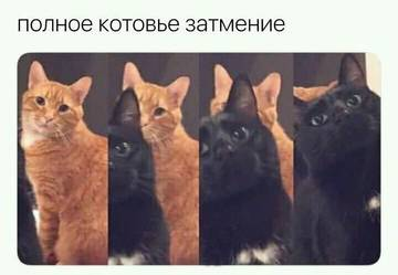 http://s8.uploads.ru/t/gzHUZ.jpg
