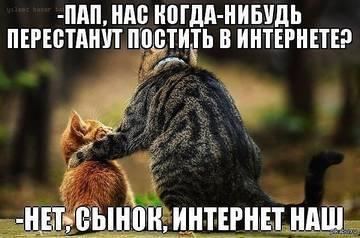 http://s8.uploads.ru/t/hO8sr.jpg