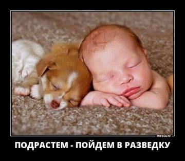 http://s8.uploads.ru/t/hbl5N.jpg