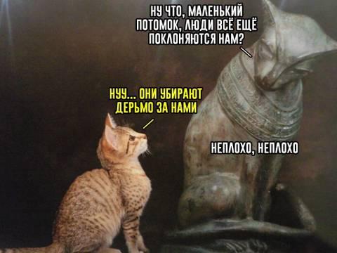 http://s8.uploads.ru/t/hwaUs.jpg