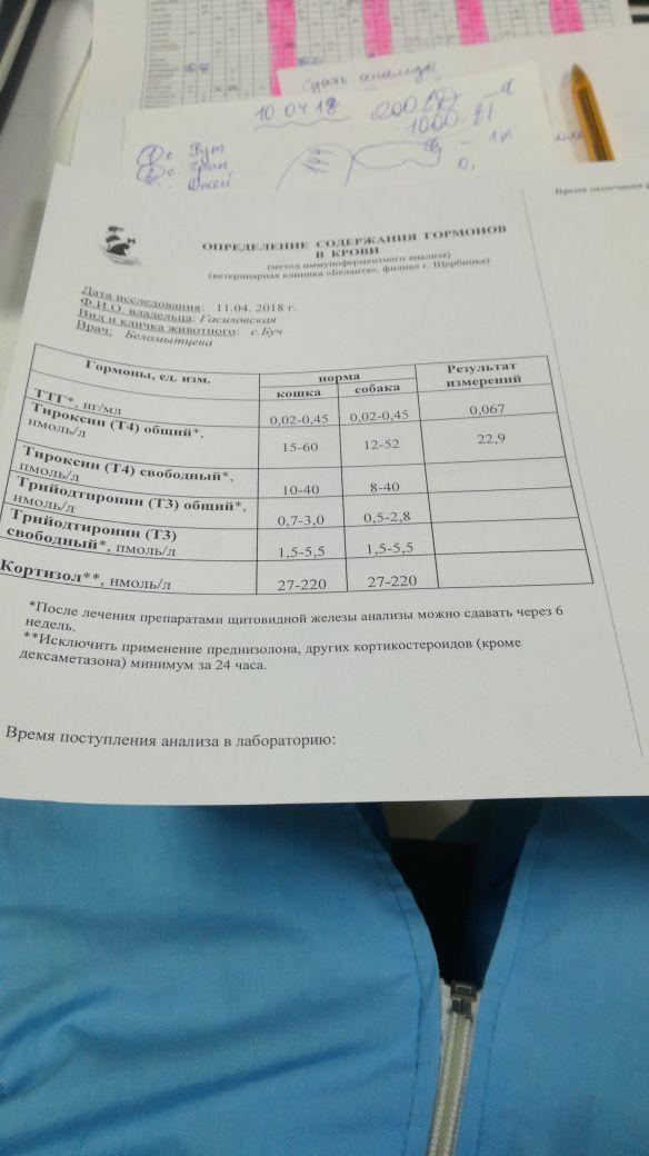 http://s8.uploads.ru/t/i0WOq.jpg