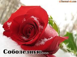 http://s8.uploads.ru/t/iEgew.jpg