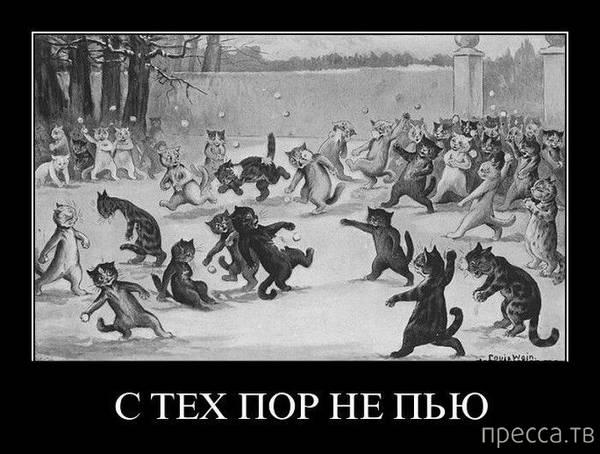 http://s8.uploads.ru/t/iX2N6.jpg