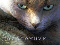 http://s8.uploads.ru/t/ifc9o.jpg