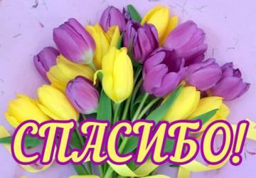 http://s8.uploads.ru/t/ij4ec.jpg