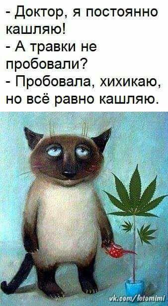 http://s8.uploads.ru/t/k3EKJ.jpg