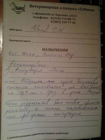 http://s8.uploads.ru/t/l3HLv.jpg