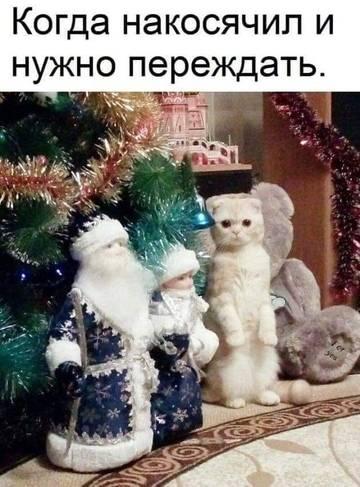 http://s8.uploads.ru/t/m1bYC.jpg