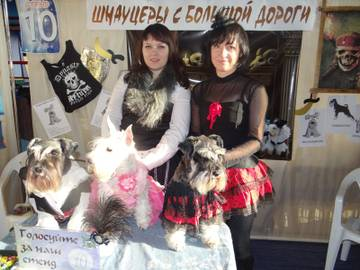 http://s8.uploads.ru/t/mgtPe.jpg