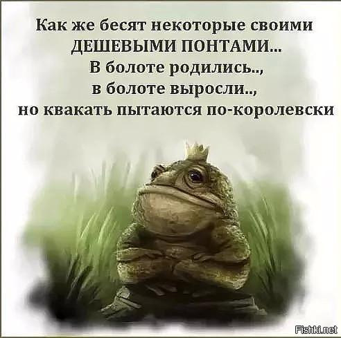http://s8.uploads.ru/t/noqyh.jpg
