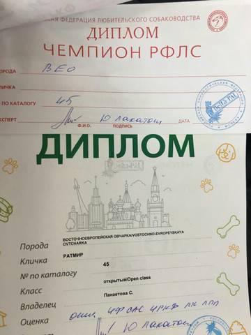 http://s8.uploads.ru/t/o7aeO.jpg