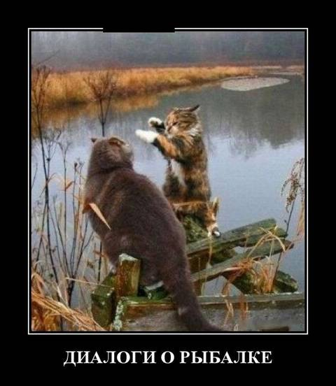 http://s8.uploads.ru/t/oXVS7.jpg