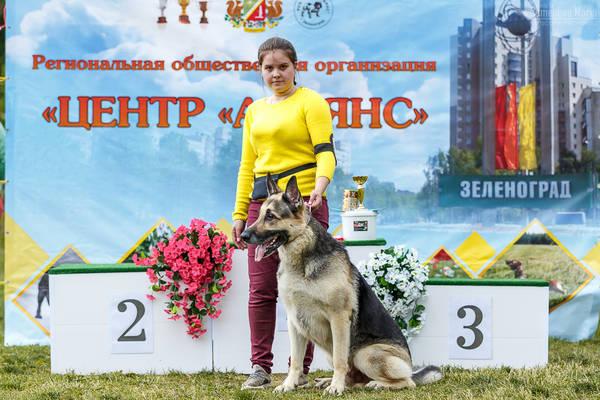 МОНО ВЕО КЧК+ 3 САС 10-11 июня г.Зеленоград PBSDm