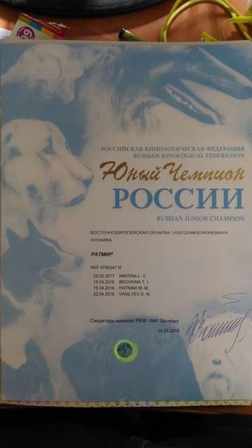 http://s8.uploads.ru/t/pnPxh.jpg