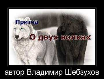 http://s8.uploads.ru/t/q5nxQ.jpg