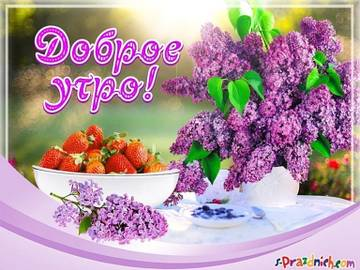 http://s8.uploads.ru/t/qaBxy.jpg