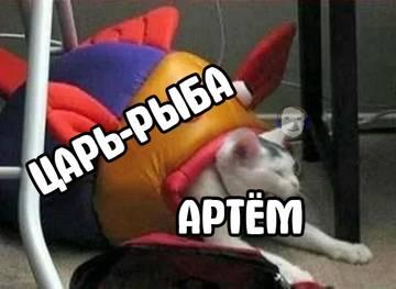 http://s8.uploads.ru/t/qlVyF.jpg