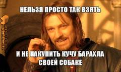 http://s8.uploads.ru/t/rF5BH.jpg
