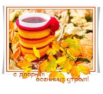 http://s8.uploads.ru/t/sg1pc.jpg