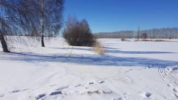 http://s8.uploads.ru/t/suzcU.jpg