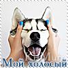 http://s8.uploads.ru/t/tTqvE.jpg