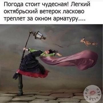 http://s8.uploads.ru/t/uGe0q.jpg
