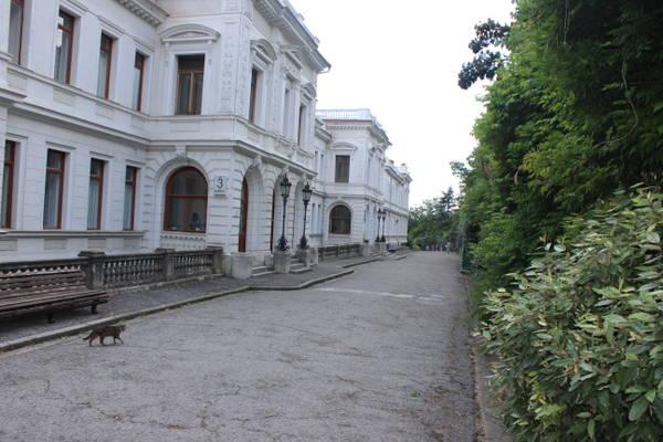 http://s8.uploads.ru/t/uKgA3.jpg