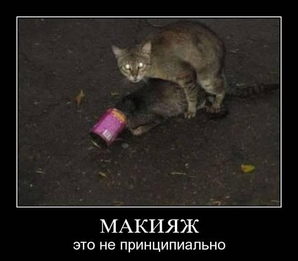 http://s8.uploads.ru/t/uSVei.jpg