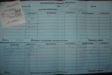 http://s8.uploads.ru/t/uYv7y.jpg