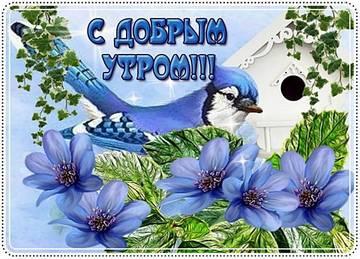 http://s8.uploads.ru/t/uwN1t.jpg