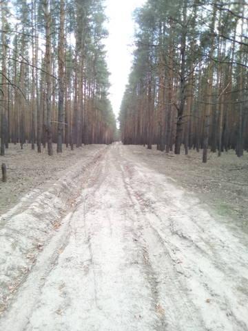 http://s8.uploads.ru/t/vAIrt.jpg