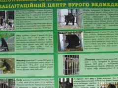 http://s8.uploads.ru/t/vIfM4.jpg
