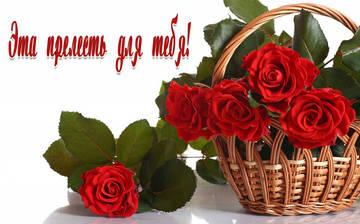 http://s8.uploads.ru/t/vQKD6.jpg