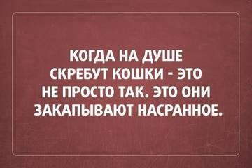 http://s8.uploads.ru/t/wM8Nk.jpg
