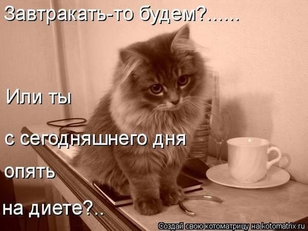 http://s8.uploads.ru/t/wRb7r.jpg