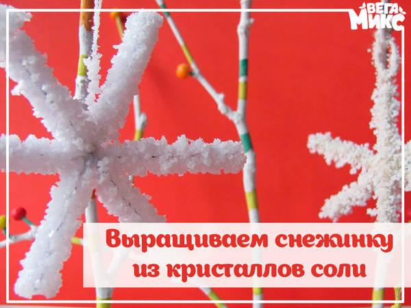 http://s8.uploads.ru/t/we2Gu.jpg