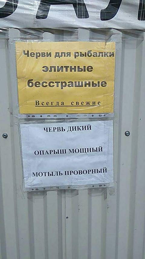 http://s8.uploads.ru/t/x5iQX.jpg
