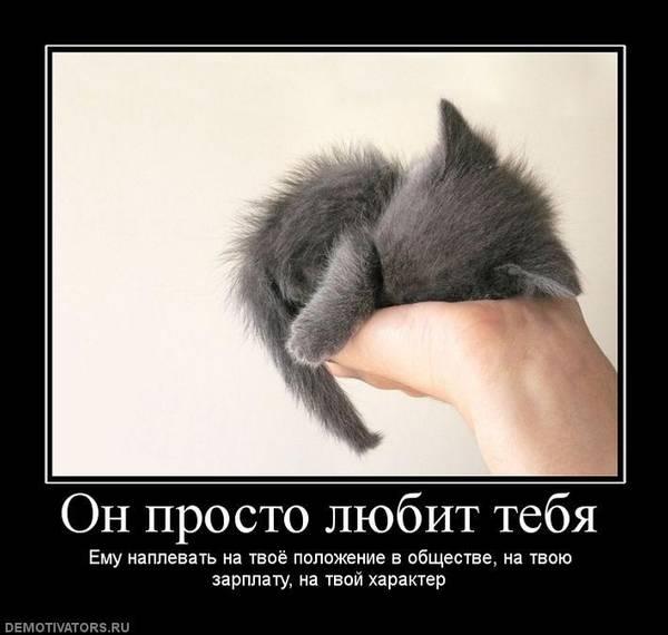 http://s8.uploads.ru/t/xPVty.jpg