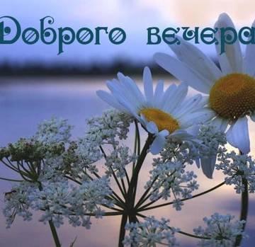 http://s8.uploads.ru/t/xqWkJ.jpg