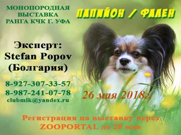 http://s8.uploads.ru/t/yGT3w.jpg